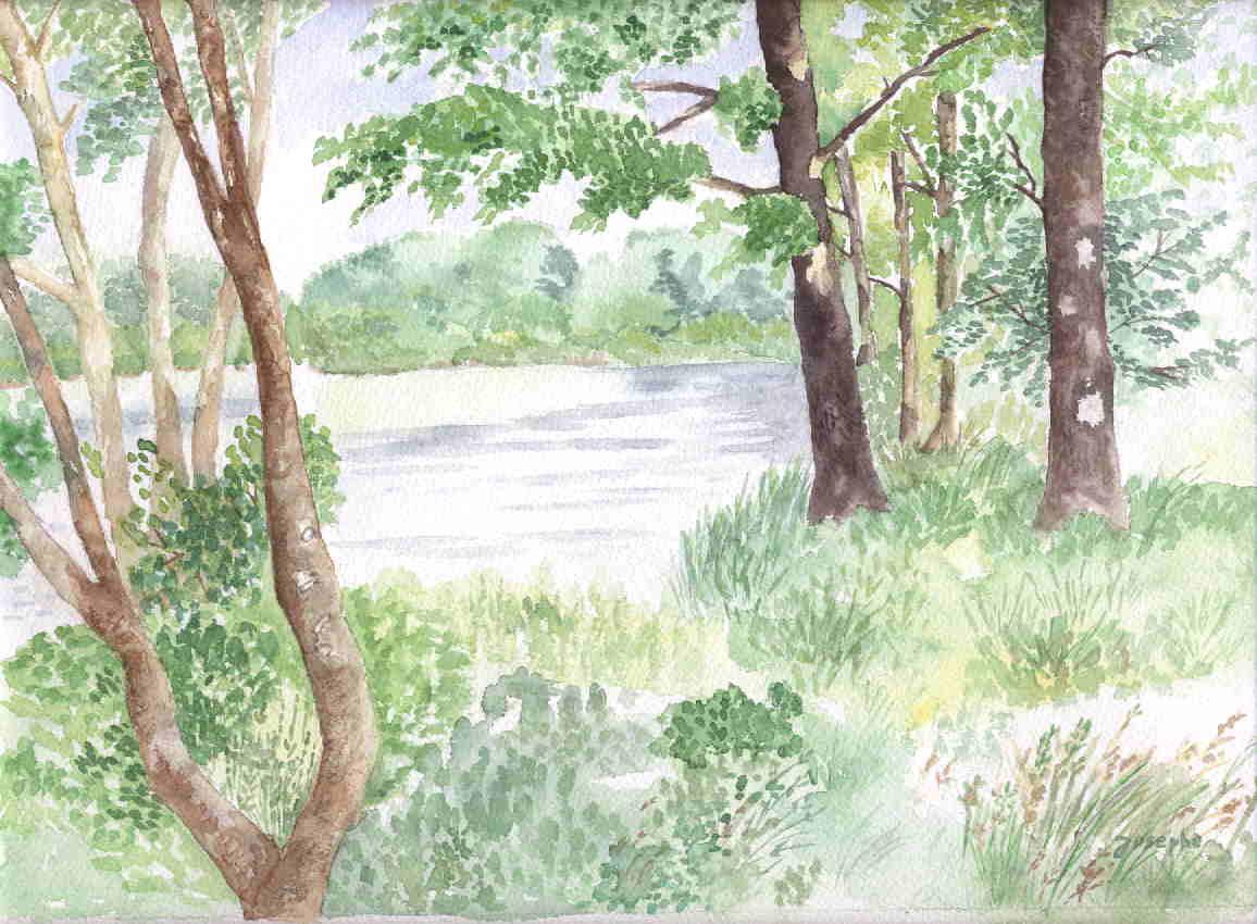 L'étang des Forges à Belfort