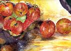 Les pommes....